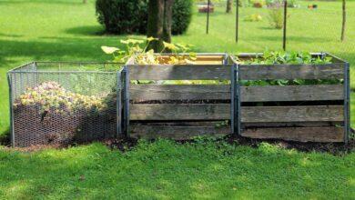 Photo of Kompostowanie odpadów w gospodarstwie