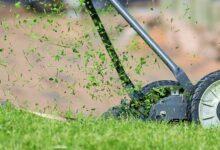 Photo of Kosiarka bębnowa – do czego może przydać się rolnikowi?