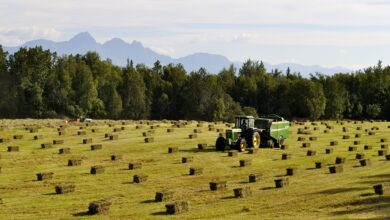 Photo of Jak przedłużyć żywotność akumulatora 12 V w traktorze?