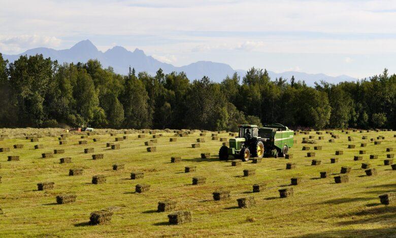 Jak przedłużyć żywotność akumulatora 12 V w traktorze